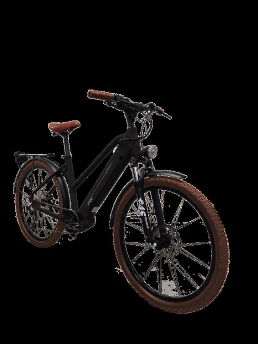 E-Bike EGO Movement Explorer 25 Frontansicht