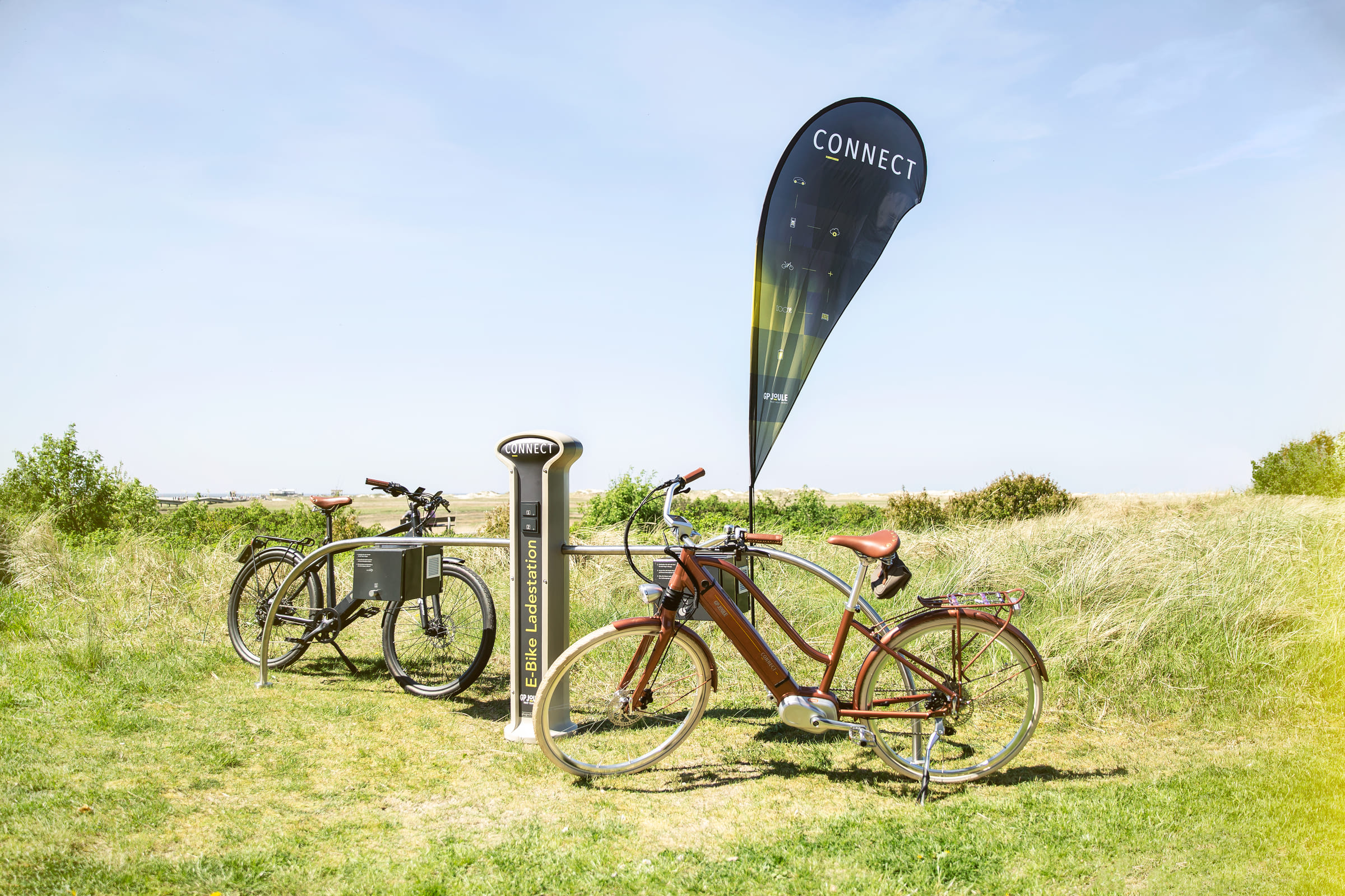E-Bike EGO Movement Classic 25 Woman bronze & schwarz in Dünen