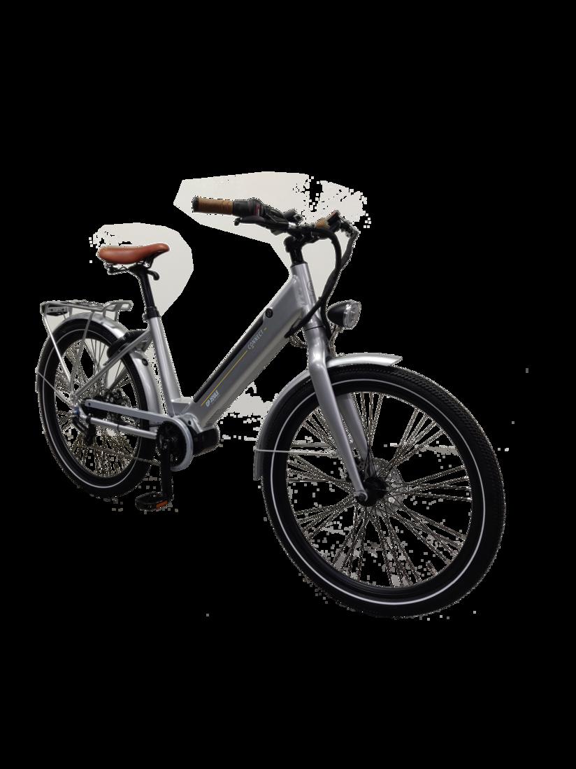 E-Bike EGO Movement 25 Frontansicht